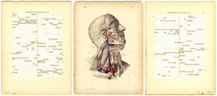 Surgical Pages, 5 & 6